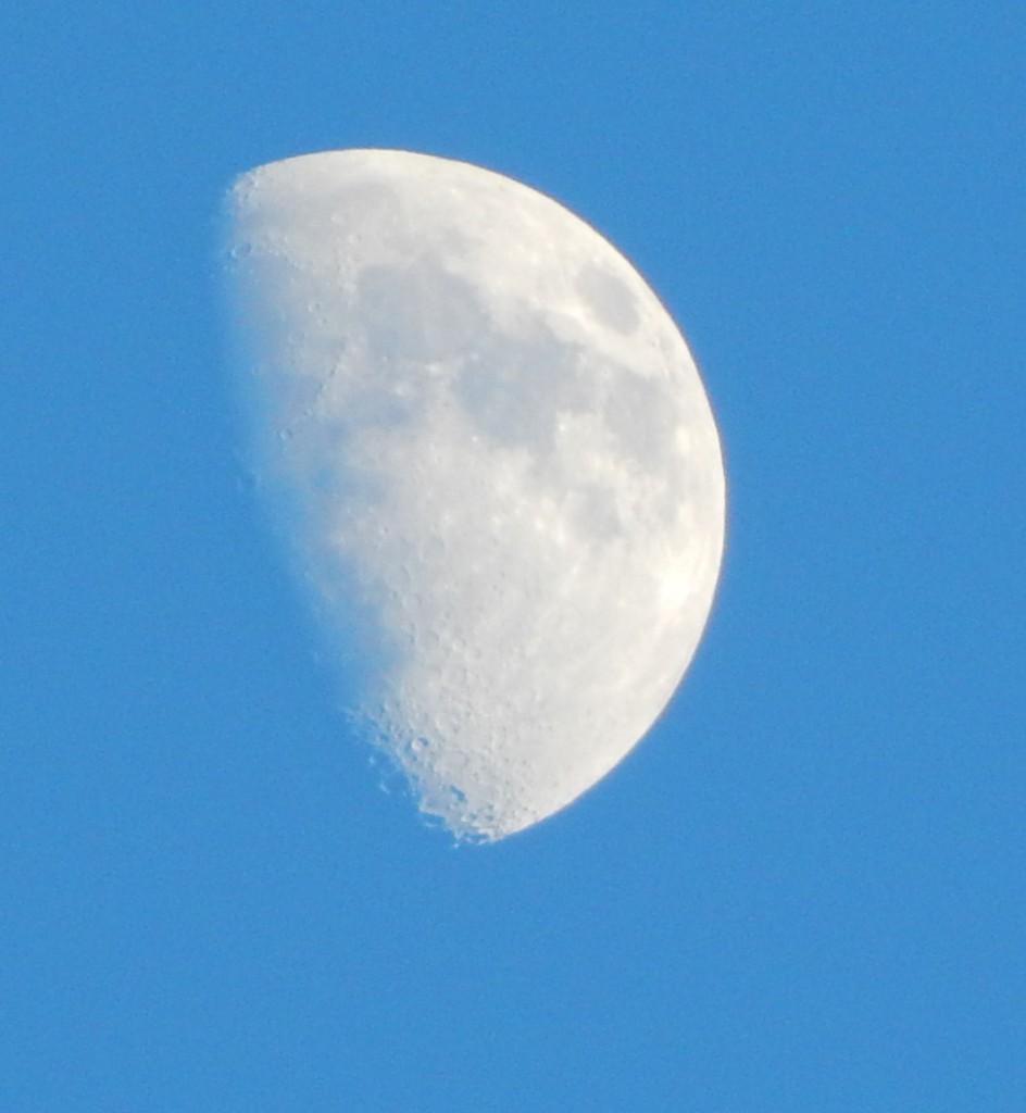 Luna in all her glory - by Julia